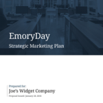strategic-plan-sample-1